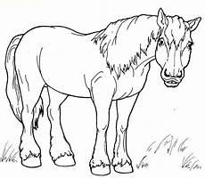 Malvorlage Pferd Zum Ausdrucken Ausmalbilder Pferd Kostenlos Malvorlagen Zum Ausdrucken