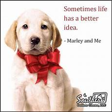 marley and me book quotes quotesgram