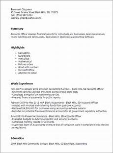Resume H Impactful Professional Finance Resume Examples Amp Resources