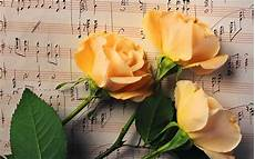 Flower Wallpaper Song by Wallpaper Flowers Yellow Notes Color Leaf