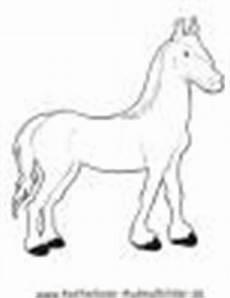 Ausmalbilder Pferde Haflinger Ausmalbilder Pferd 4 Tiere Zum Ausmalen Malvorlagen Pferde