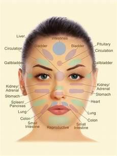 Facial Techniques Chart Face Reflexology Chart Face Reflexology Interesting