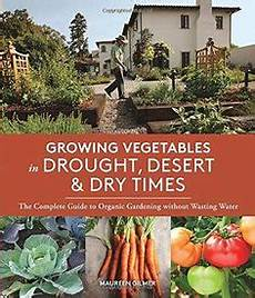 1000 Images About Small Budget Gardening On Pinterest