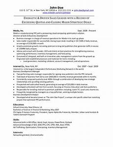 Sample Resume For Online Sales Resume Sample
