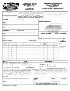 Transport Bill Sample 9 Transport Bill Of Lading Examples Pdf Examples
