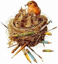index of users tbalze bird nest