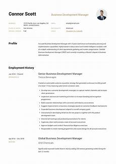 Business Development Manager Resume Business Development Manager Resume Amp Guide 12 Templates