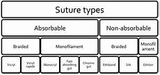 Suture Types Chart Nice Threads A Guide To Suture Choice In The Ed Canadiem