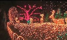 Brookside Gardens Lights Hours Brookside Gardens Cancels Traditional Garden Of Lights