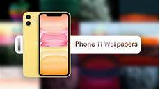 Iphone 11 Pro Back Wallpaper 4k by Iphone 11 Wallpapers 4k Live Wallpapers