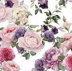 flower wallpaper watercolor watercolor floral wallpaper pink roses removable wallpaper