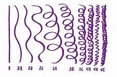 Hair Porosity Chart Hair Types And Porosity Everything You Want To Know