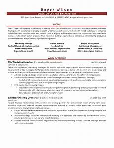 Director Of Sales Resume Director Of Sales And Marketing Resume