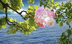 live flower wallpaper for desktop free animated active desktop wallpaper live