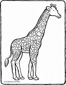 Ausmalbilder Drucken Giraffe Giraffe Kiddimalseite