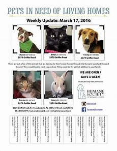 Pet Flyer Pet Flyer March 17 2016 Humane Society Of Broward