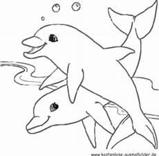 ausmalbild delphine zum ausdrucken