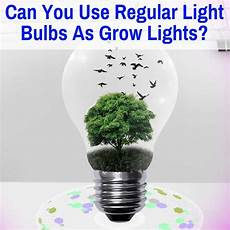 Types Of Light Bulbs For Growing Plants Can You Use Regular Light Bulbs As Grow Lights In 2020