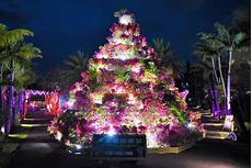 Botanical Gardens Okinawa Lights Okinawa S Most Instagrammable Event At Southeast Botanical