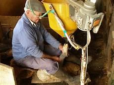 Gavage Feeding File Foie Gras Gavage In Rocamadour France Jpg Wikipedia
