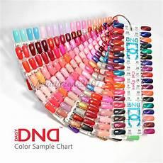 Color Gels Color Chart Dnd Daisy Gel Polish Color Sample Chart Palette Display