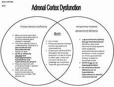 Adh Vs Aldosterone Venn Diagram Tutor S Notes General Cardiovascular Respiratory And