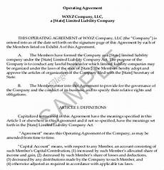 Example Llc Operating Agreement Operating Agreement Template 12 Free Word Pdf Document