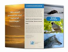 Create A Pamphlet Online Free Free Brochure Maker Online Lucidpress