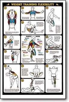 Flexibility Chart Weight Training Flexibility Fitness Chart F13