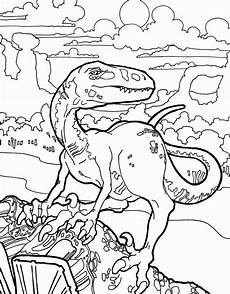 Dinasor Coloring Velociraptor Coloring Pages Best Coloring Pages For Kids