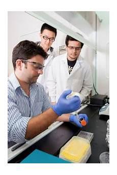 Biomedical Engineering Masters Biomedical Engineering M S Florida Tech