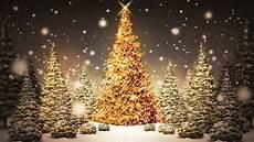 Professional Christmas Tree Lights Christmas Love Light Tree Lighting Freeport News Network