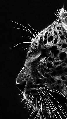 black and white tiger iphone wallpaper iphone hd black white hd wallpapers