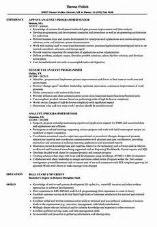 Sample Program Analyst Resume Analyst Programmer Resume Mt Home Arts