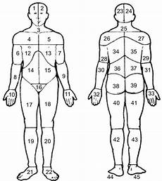 Outline Of Human Body Front And Back Body Manikins Used To Define The 45 Sites In The