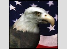 Great Animated Eagle Gifs at Best Animations