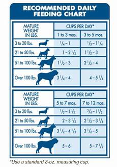 Puppy Food Chart By Age Dog Feeding Guide By Age Weight A Day Of Increased