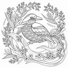 bird with floral elements birds coloring pages