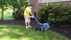 edging a landscape garden with a bluebird bed bug
