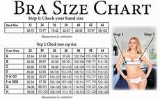 Breast Pump Size Chart Bra Size Chart Does Your Bra Fit How To Instructions