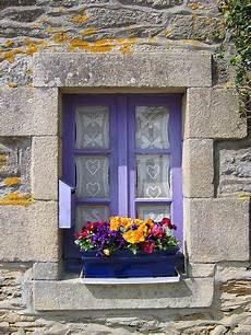 fioriere per davanzale finestra purple fioriere finestra fioriere per davanzale finestra