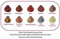 Surya Henna Hair Color Chart Total Back System Momentum98