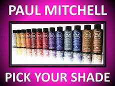 Paul Mitchell Inkworks Color Chart Paul Mitchell Demi Permanent 2 Oz Hair Color Pm Shines All