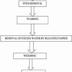 Pepper Processing Flow Chart Pdf Thin Layer Convective Drying Of Mint Leaves