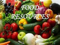 Food Resources A Brief Description About The Mineral Resources And Food