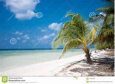 Tropical Island Paradise Tropical Island Paradise Royalty Free Stock Images Image