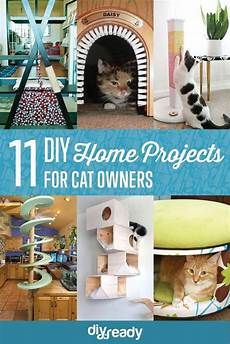 11 creative cat diy home projects for cat diy cat