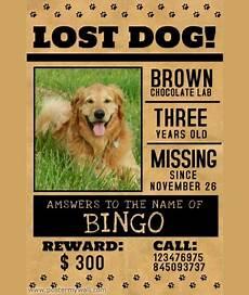 Lost Dog Poster Maker 10 Missing Lost Pet Poster Templates Word Excel Amp Pdf