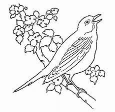 Malvorlagen Vogel Kostenlos Malvorlagen Fur Kinder Ausmalbilder Vogel Kostenlos