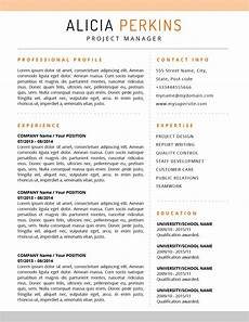 Us Resume The Resume Soft Colored Template